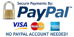 PayPal Payment Link