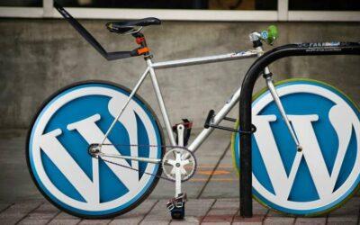 Plugin vulnerability finders tell WordPress users to update asap